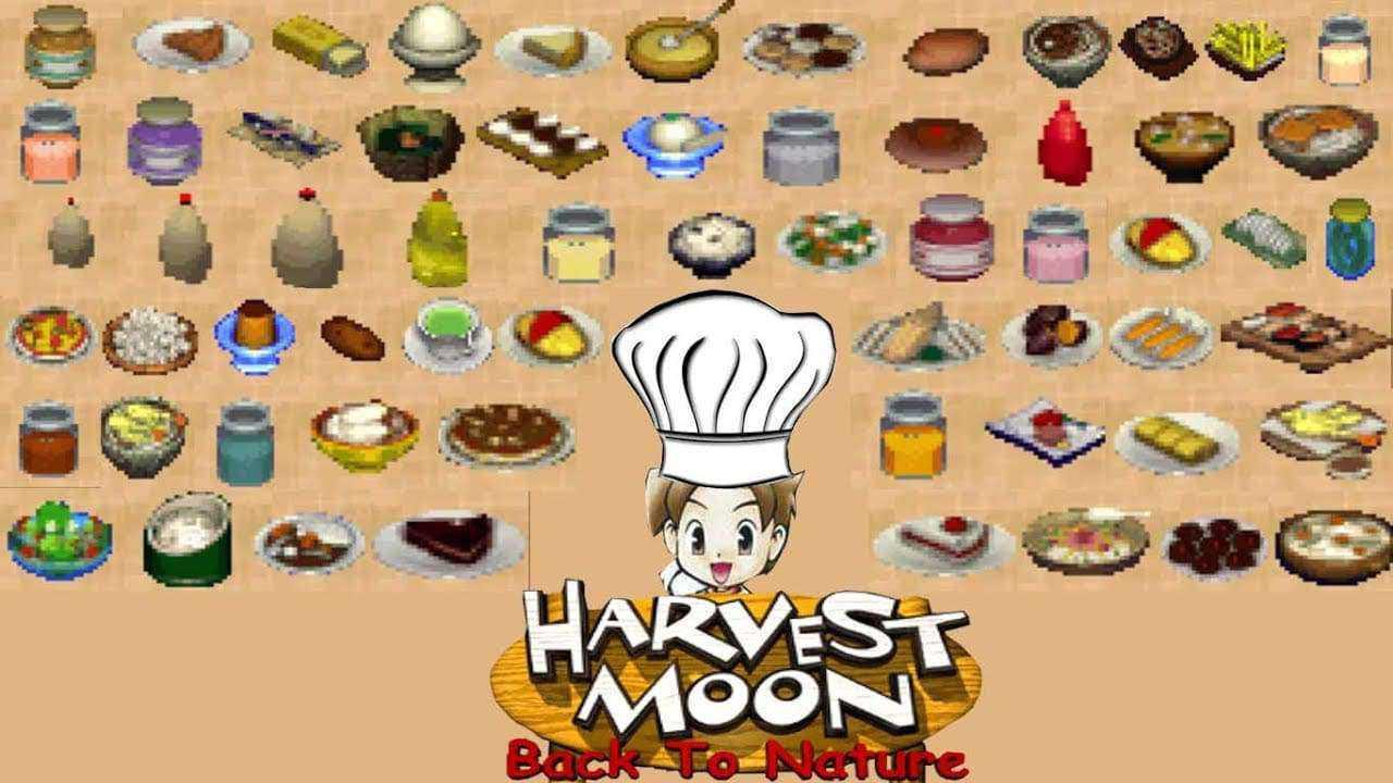 resep masakan harvest moon back to nature