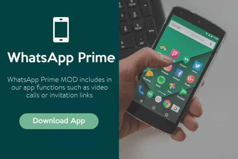 whatsapp prime